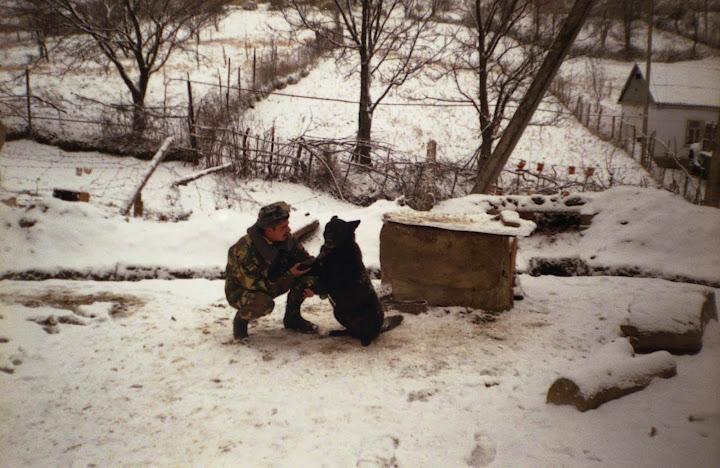 Собачьи сердца: продолжение