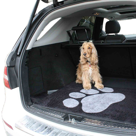 Dog Travel Accessories