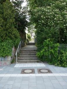 Treppenstufen ohne Rampe.