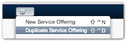 Duplicate Service Offering