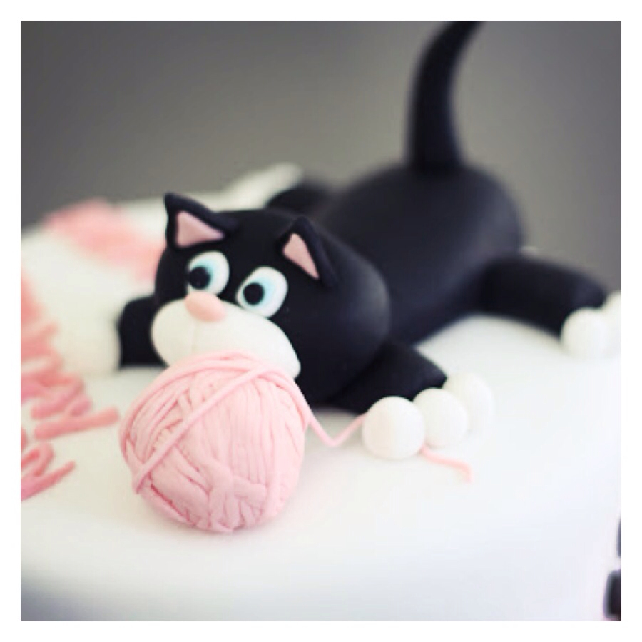 Bailey The Cat Cake