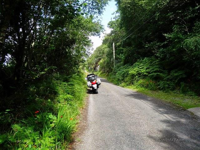 passeando - Passeando por caminhos Celtas - 2014 - Página 3 1%2B%2847%29