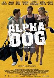 Alpha Dog - Chú chó đầu đàn alpha