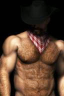 Bara Hairy Bears, Muscle Daddy Hunks in 3D