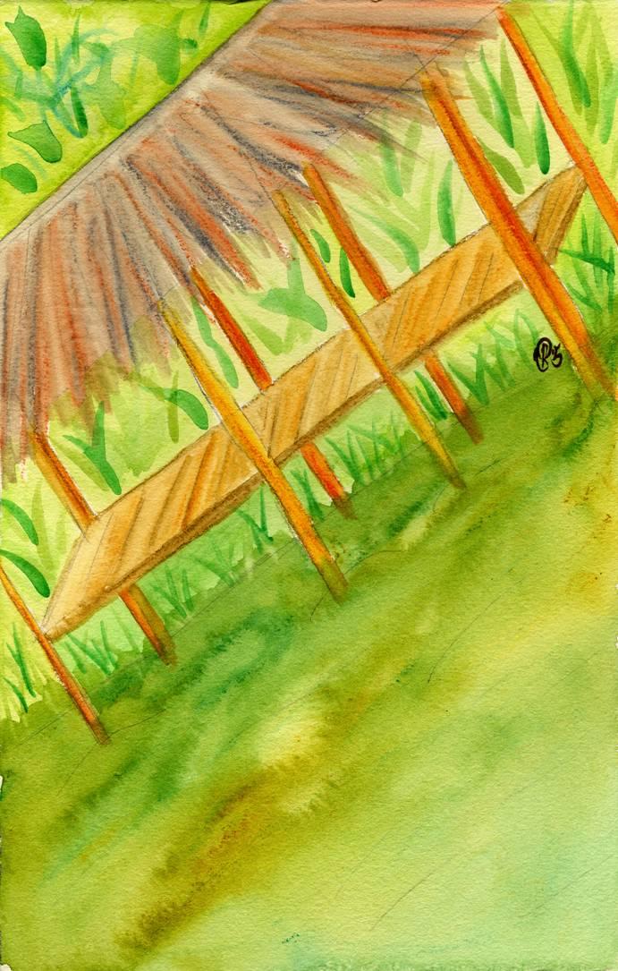 Costumbres y Tradiciones Delta Amacuro Los Warao  YELLICE
