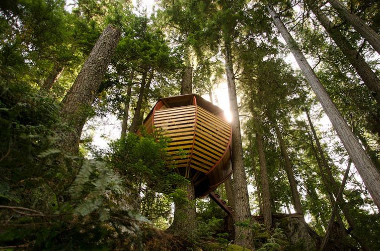 тайна бърлога в гората за всеки който иска да се скрие от града