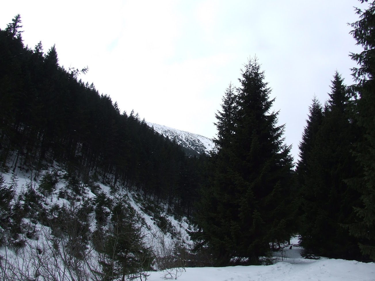 Zejście z Iwaniackiej Przełęczy