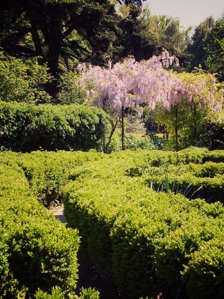 labirint gradina botanica bucuresti