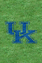 Kentucky%252520Wildcats%252520Grass.jpg