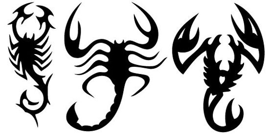 black tribal scorpion tattoos