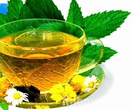 польза мятного чая для похудения