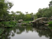 Пешеходный мост через реку Уж в Коростене