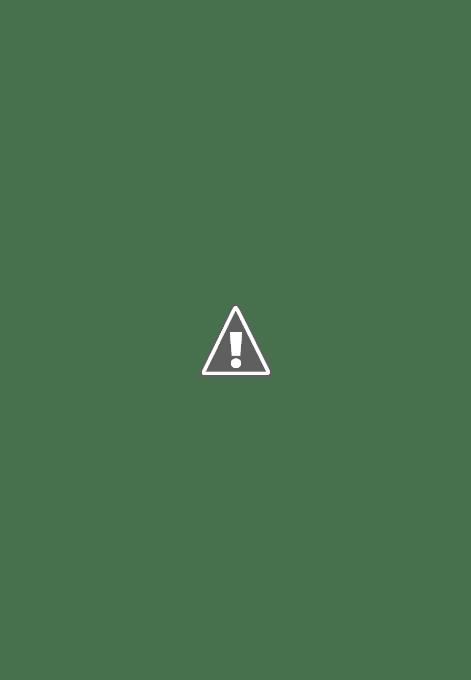 《室外設計:我的花園》續