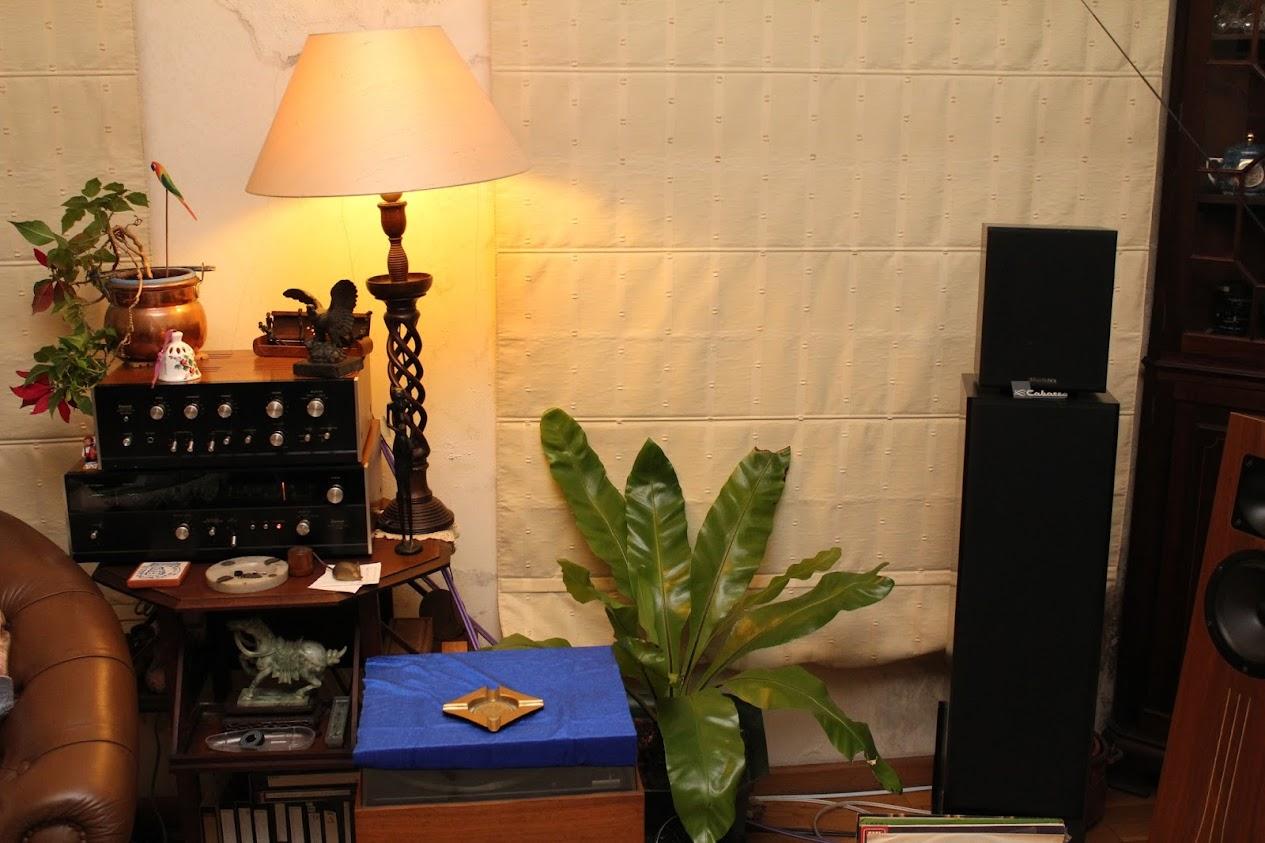 Mini amplificador PCL86 IMG_0760