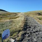 Main Range Track north of Carruthers Creek (268160)