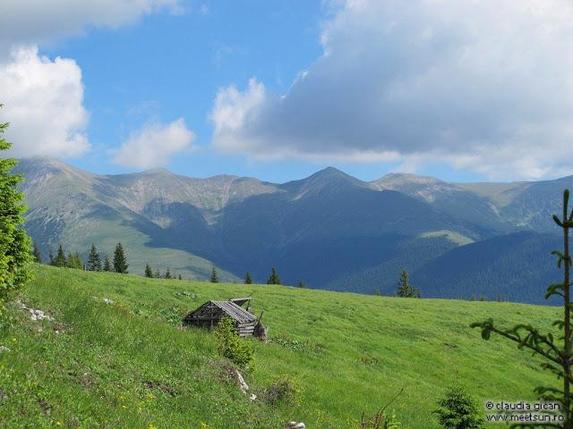 Retezat Trail Race - stana din Plesa