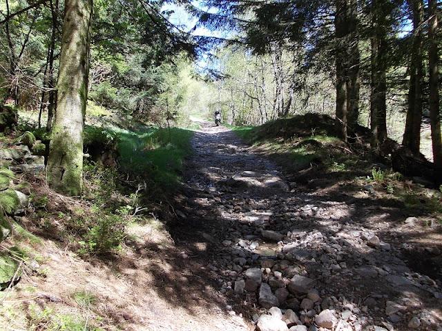 Comparo et retour d'expés sur ≠ Trails dispos DSCN0745