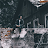 POL EX avatar image