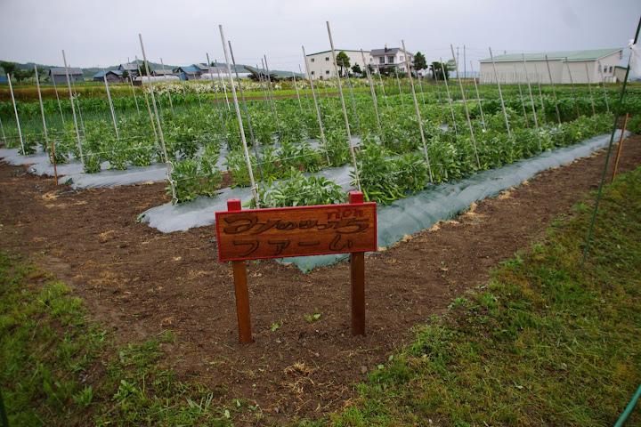 山田孝雄 農場長・手作りサインボード