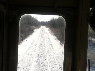 林の中を進む列車