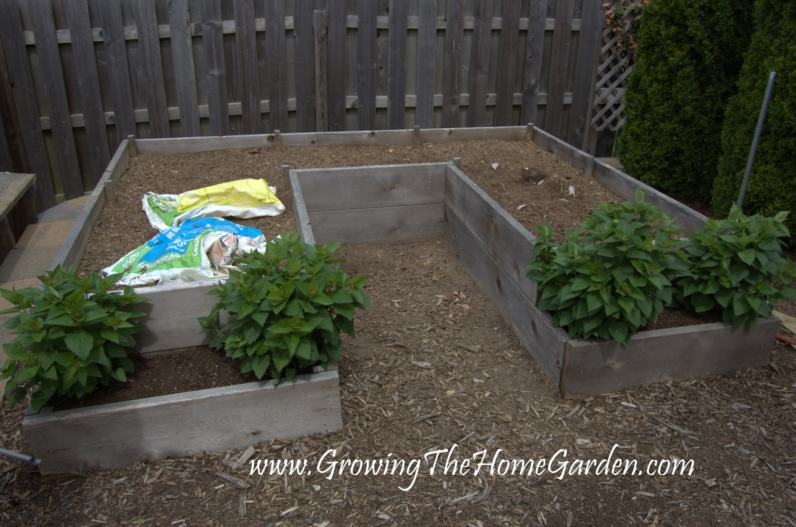A U Shaped Raised Bed Garden Layout