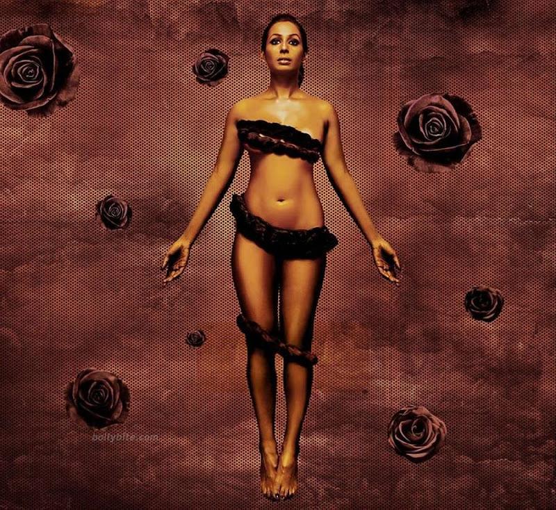 Kashessential-kashmira-shah-topless-calendar