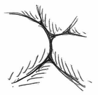 Logos, partie 4