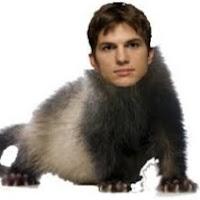 Lewis Calder's avatar