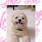 Monalisa Joseph avatar image