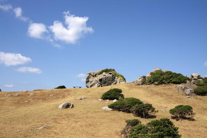 芝生の向こうに猿岩が