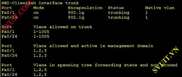 cau hinh spanning tree protocol(5)