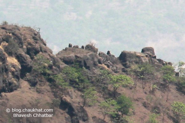 Rocks, boulders, stones on the peaks of the huge mountains of Varandha Ghat