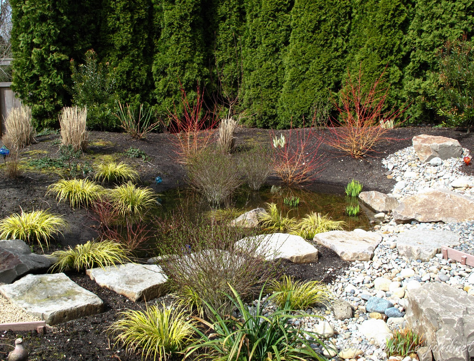 Garden Adventures - for thumbs of all colors: Rain Gardens; Muddy or ...