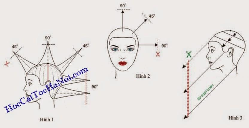 hoc cat toc nu kieu so le lien ket 1 Dạy cắt tóc nữ cơ bản, Kiểu tóc ngang chúi tầng cao