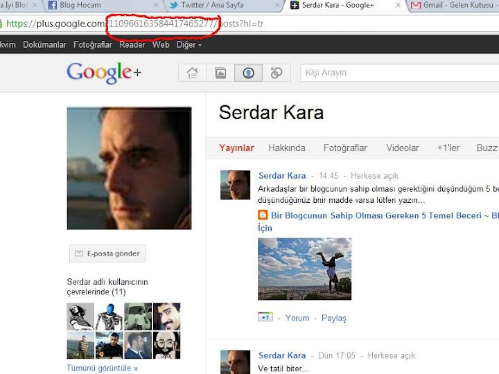 Google Plus Profil ID