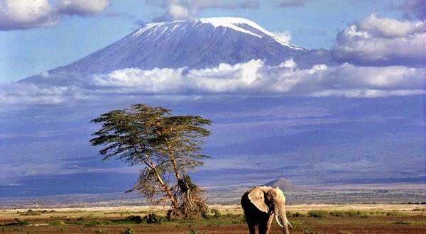 Subida al Kilimanjaro (Tanzania)