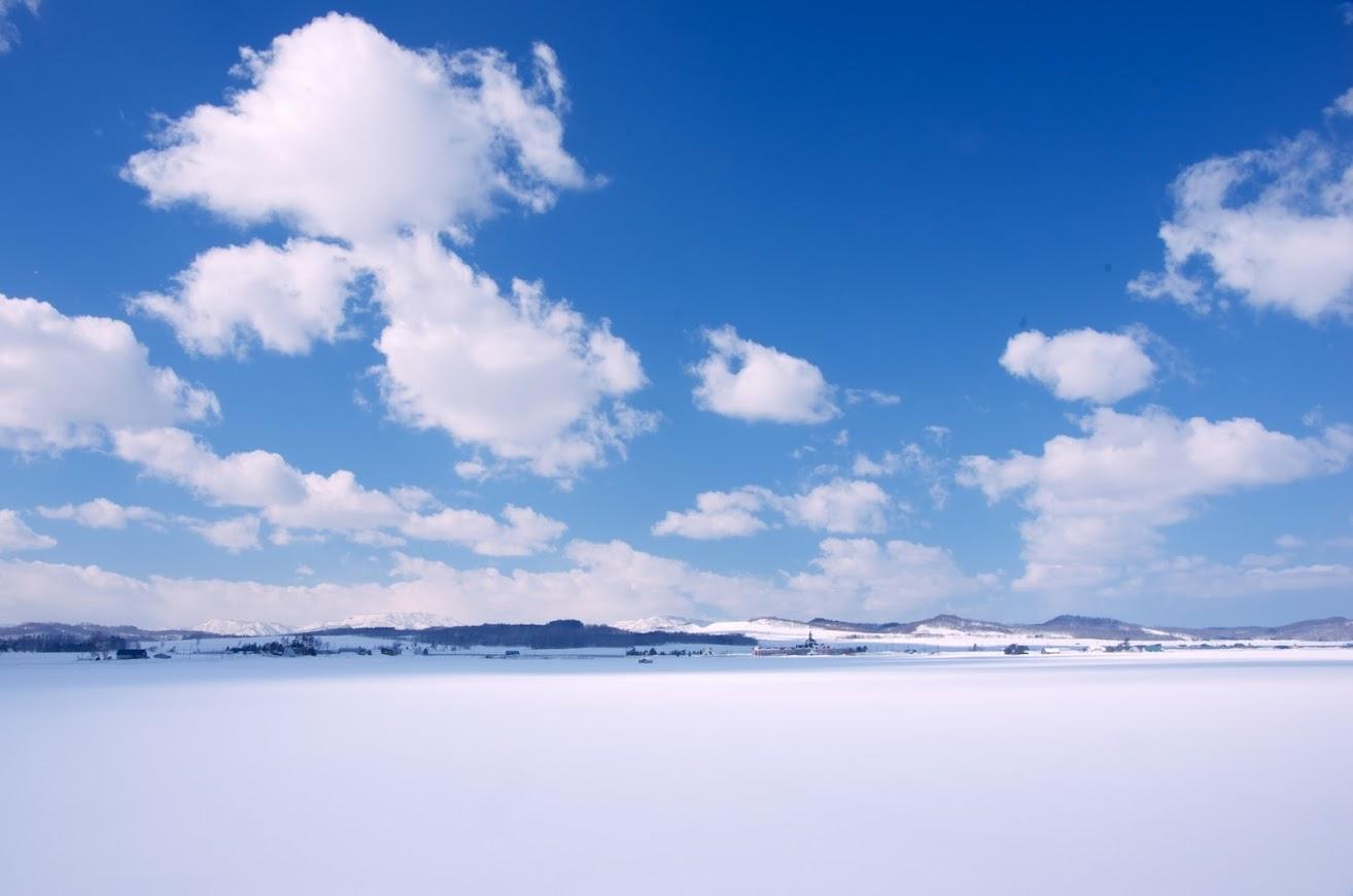 北竜町の冬の田んぼ