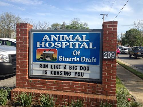 Animal Hospital of Stuarts Draft: Run like a big dog is chasing you
