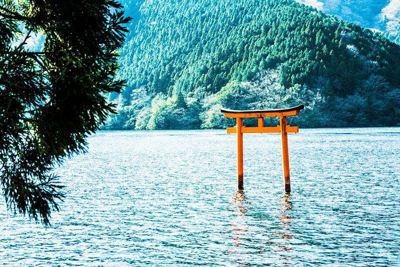 箱根 九頭龍神社本宮 写真4