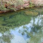 Beautiful colour of Emerald Pool (160294)