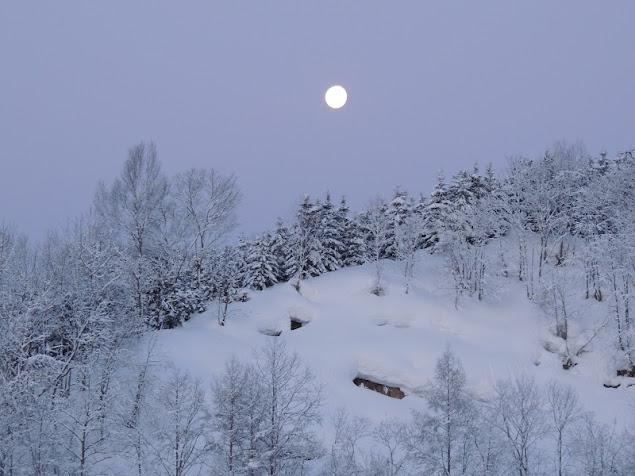 早朝の月・西の方角に沈む頃 1