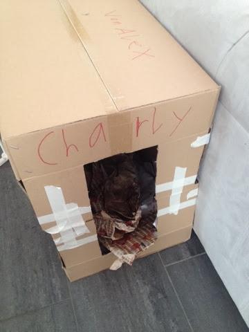 Hundehütte aus Karton und Geschenkpapier für Charly
