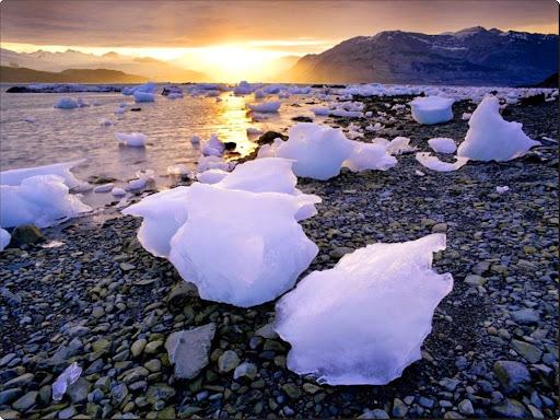 Glacial Icebergs, Icy Bay, Alaska.jpg