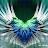 murshid alshukairi avatar image