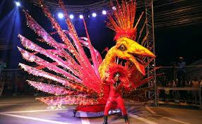 Image result for CARNIVAL kings and queens competition
