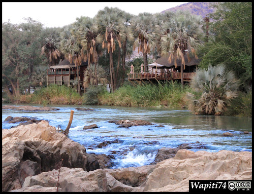 Balade australe... 11 jours en Namibie IMG_0480