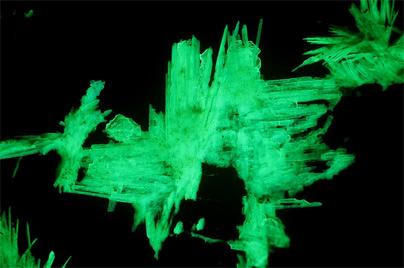 Sabugalitas de mina El Lobo bajo UV