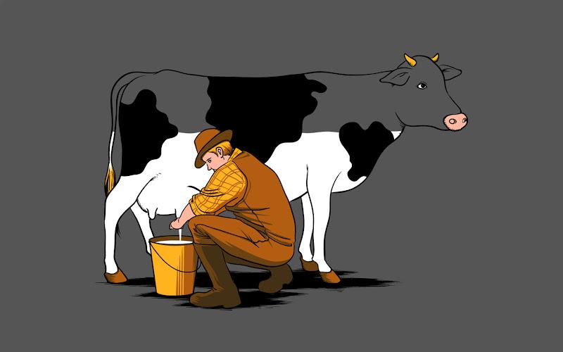 milk%252520funny%252520cows%252520farms%