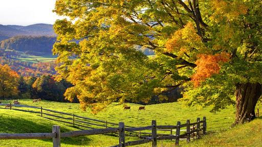 Autumn On The Range, Woodstock, Vermont.jpg
