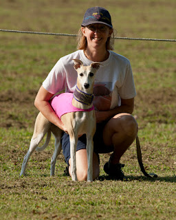 Blondie at her First AKC Lure Coursing Trial - SHOT - 9-22-2012  (5 point major!)